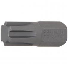 "Antgalis ilgis 30mm.(3/8"") Spline (RIBE) M11"