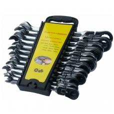 Terkšlinių chromuotų raktų komplektas vartoma galvute 8-19 mm. 12 vnt.